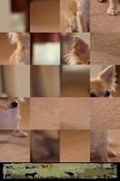 Screenshot of Dog Puzzle: Chihuahua