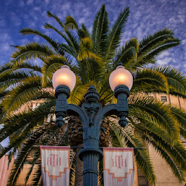Hollywood Tower Hotel by Nicole Nichols - City,  Street & Park  Amusement Parks (  )