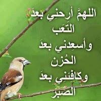 Screenshot of أدعية لهداية القلوب