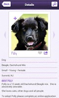 Screenshot of Petfinder