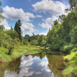Kanaka Creek Regional Park by Ernie Kasper - City,  Street & Park  City Parks ( clouds, peaceful, blue sky, nature, park, regional, beautiful, creek, trees, reflections, forest, wonderful )