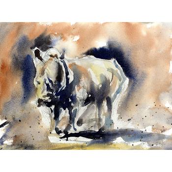 Rhino Africa wildlife art original painting watercolour