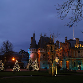 Waddesdon Manor at Christmas by Mark Thompson - Buildings & Architecture Public & Historical ( lights, building, chritmas trees, waddesdon manor, trees, night, chrisatmas, dusk, colours )