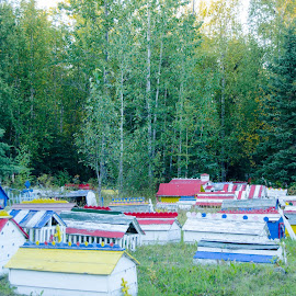 Athabascan Burial Houses by Rivka Zorea - Landscapes Travel ( cemeteries, graves, colors, burial places.alaska natives )