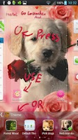 Screenshot of Red Rose Dog Theme GO Launcher