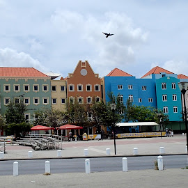 Colorful Dutch Buildings by Donald Henninger - Buildings & Architecture Other Exteriors ( city scape, city parks, willemstad, curacao, colorful, buildings, colonial, historic district, cityscape, city park, caribbean )