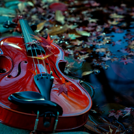 The Red by Nyoman Sundra - Artistic Objects Musical Instruments ( red, violin, still life, instrument, object )