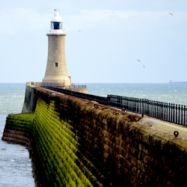 the wall by Paul Pirie - Buildings & Architecture Other Interior ( water, fence, lighthouse, stone, sea, pier, coast, wall )