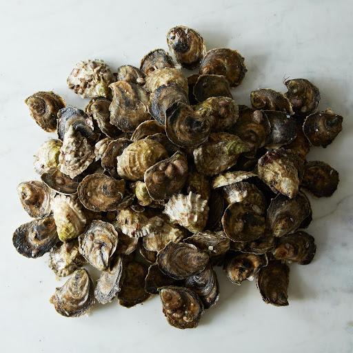 100 Island Creek Oysters