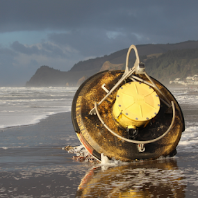NOAA Tsunami Buoy by Vonelle Swanson - Artistic Objects Technology Objects