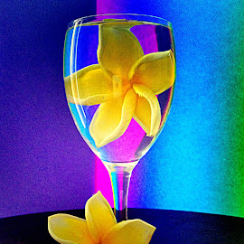 Flowers and glass by Janette Ho - Artistic Objects Glass ( purple, yellow, color,  )