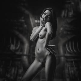 Alina by Dmitry Laudin - Nudes & Boudoir Artistic Nude ( studio, nude, girl )