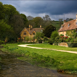 Daffodills Upper Slaughter by Eric Bush - Landscapes Travel ( daffodills, upper slaughter, cotswolds,  )