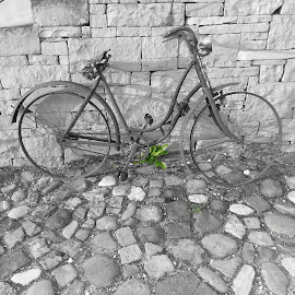 Old Swiss bicycle. by Dale Balla - Artistic Objects Antiques ( monochrome, antique, bicycle )