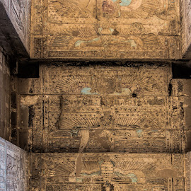 Art on ceiling by Vibeke Friis - Buildings & Architecture Public & Historical ( ancient, ceiling, temple of horus, egypt, Architecture, Ceilings, Ceiling, Buildings, Building )