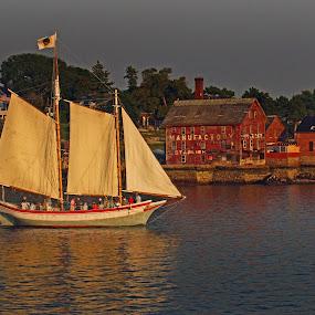 The Schooner Fame 01 by Jeff Stallard - Transportation Boats ( ship, sail, schooner fame, salem, massachusetts, sailing ship )