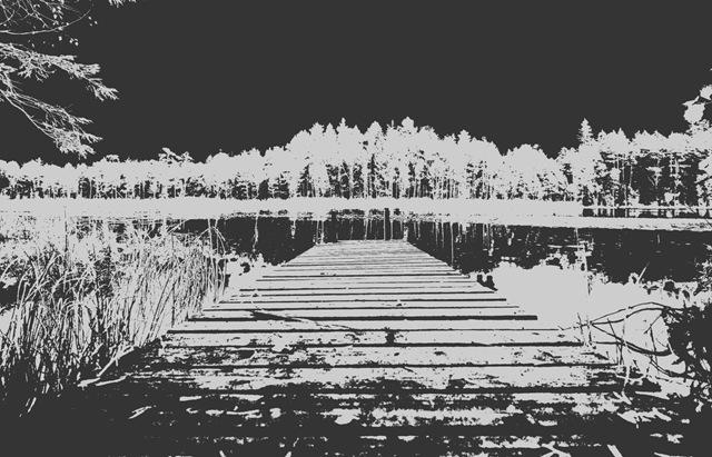 jarv_mv_2