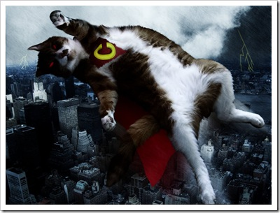 Supercat_by_rev_Jesse_C