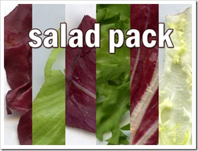 Salad_Pack_by_rev_jesse_c_stock