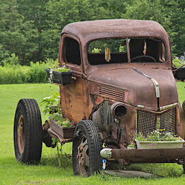 Old rusty by Michelle McCray - Transportation Automobiles