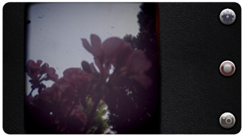 Screenshot of Vintage 8mm Video Camera