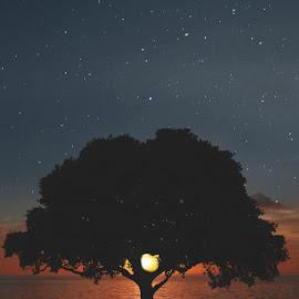 Sunset by Alex Smiricinschi - Digital Art Places ( water, sky, blue, stars, sunset, ocean, photoshop )