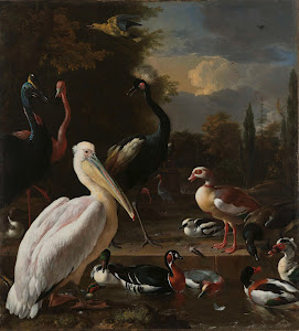 RIJKS: Melchior d' Hondecoeter: A Pelican and other Birds near a Pool, Known as 'The Floating Feather' 1680