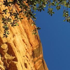 Sedona by Katherine Striegel - Landscapes Deserts