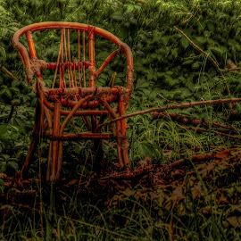 Solitary Chair by Bojan Bilas - Artistic Objects Furniture ( solitary, chair, nature, landscape,  )