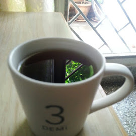 A cup of green tea  by Sumantha Sharma - Artistic Objects Cups, Plates & Utensils ( reflection, green leaf, tea, teacup )