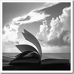 livro_vento