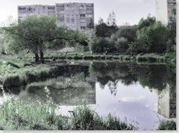 Це теж продовження р. Сапалаївка, як і Теременський ставок. Чесно кажучи, там нічого не ловив, в тому плані що не ходив нормально туди рибачити.