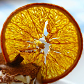slice of orange by Primož Ogorevc - Food & Drink Fruits & Vegetables ( orange, sweet, food )