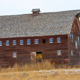 Centennial Barn, Berthoud, Colorado by Richard Duerksen - Buildings & Architecture Public & Historical ( weld county, berthoud, winter, centennial farm, colorado, decaying )