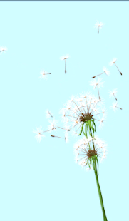 Dandelion Breeze LW - screenshot