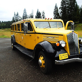 1930's White Touring Car by Donald Henninger - Novices Only Street & Candid ( automobile, yellowstone national park, nostalgia, tourism, transportation, yellow, black )