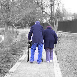 Still holding hands. by Lorraine D.  Heaney - People Couples (  )