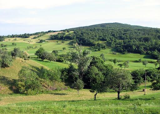 pogled na Ter iz Velike poljane