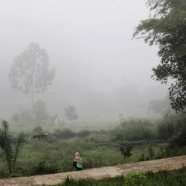 Morning by Hartono Wijaya Toraja - Novices Only Landscapes ( morning dew )