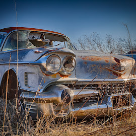 '58 Cadillac Coupe deVille by Ron Meyers - Transportation Automobiles