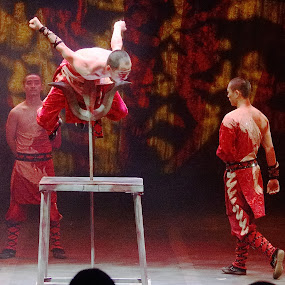 Martial Arts Balancing Act by Stephen Beatty - News & Events Entertainment