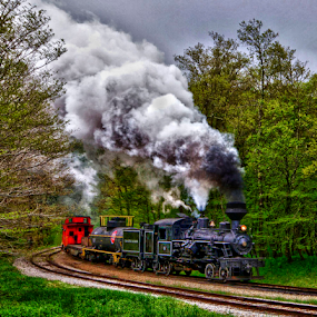 by Donna Neal - Transportation Trains ( red caboose, cass, train, wv, steam, shay eng. )