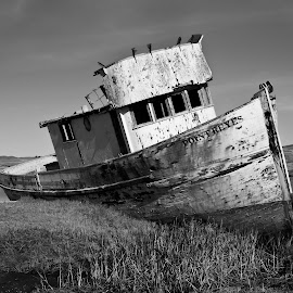 The Point Reyes, Inverness, CA by Michael Reeves - Transportation Boats ( point reyes, ship, boat, fishing boat, inverness, abandoned )