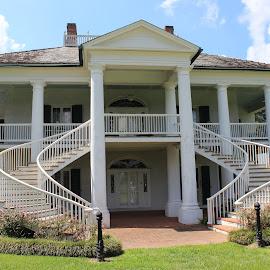 Evergreen Plantation, Louisiana by Tara Bauman - Buildings & Architecture Homes
