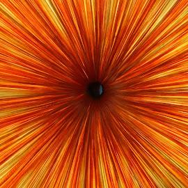 Orange  by Renu Mudi - Abstract Patterns ( abstract, orange, red )