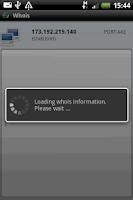 Screenshot of Netstat Professional
