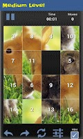 Screenshot of Slide Puzzle Animal