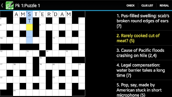 Screenshot of Crossword Cryptic Lite