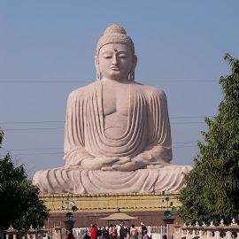 Huge Buddha at Buddh Gaya by Prosenjit Malakar - Buildings & Architecture Places of Worship ( huge, buddh gaya, huge buddha at buddh gaya, buddha, gaya )