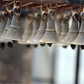 Bells by Monika Soota - Novices Only Objects & Still Life ( metal bells )